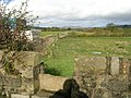 Footpath - Cononley Lane - geograph.org.uk - 1016188.jpg