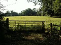 Footpath across a field - geograph.org.uk - 513101.jpg
