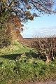 Footpath beside Beswick Heads Plantation - geograph.org.uk - 1042634.jpg