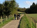 Footpath to West Stoke car park - geograph.org.uk - 763681.jpg