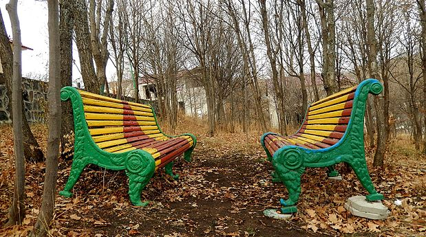 Forest benches.jpg