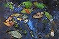 French Swamp.jpg