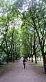 Frogner Park Walkway.JPG