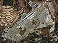 Fuji Speedway Aerial photograph 2007.jpg