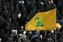 Funeral of Mohsen Hojaji in Tehran 09.jpg