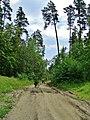 G. Miass, Chelyabinskaya oblast', Russia - panoramio (118).jpg