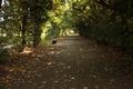 Garden path in Kromeriz.png