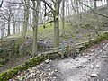Gate entrance to Great Shacklow Wood - geograph.org.uk - 755110.jpg