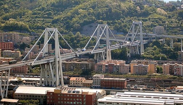 Мэры Ниццы и Kанн предложили свою помощь Италии после падения моста Моранди