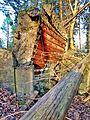 Gesprengter Bunker im Beckinger Wald 9.jpg