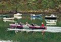 Gig (longboat) racing at Solva (4) - geograph.org.uk - 1531216.jpg