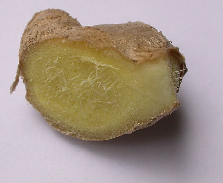 File:Ginger-cross-section.jpg