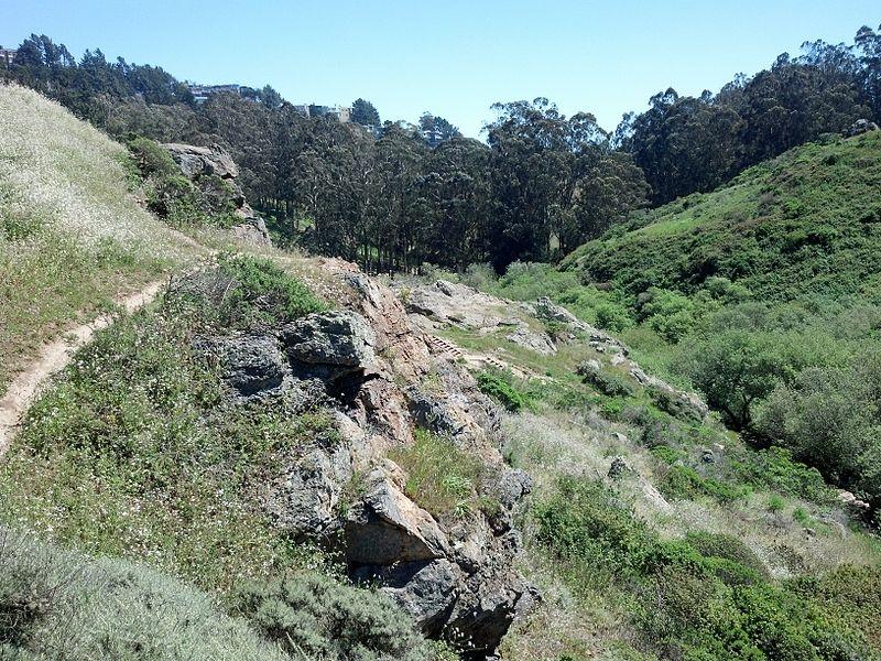 File:Glen canyon san francisco april 2013.jpeg