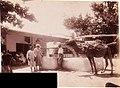 Gloeden, Wilhelm von (1856-1931) - n. 2576 recto - Tunisia - Pozzo tunisino.jpg