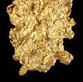 Gold-cat13e.jpg
