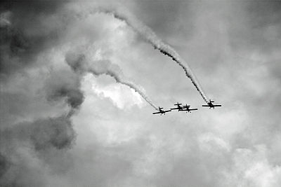 Goraszka 2010 Flying Bulls Aerobatic Team (1) bw.jpg
