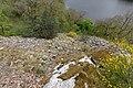 Gorges de la Sioule Saint-Gervais d'Auvergne n12.jpg
