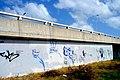 Graffitis en el Puente de las Americas - panoramio (5).jpg