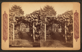 Grape arbor at Germantown, from Robert N. Dennis collection of stereoscopic views 2.png