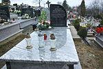 Grave of Ryszard Pytlowany at Dąbrówka Cemetery in Sanok 1.jpg