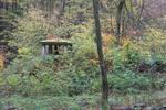 Grebenhain Grebenhain Zum Hohenrain Ruins Muna d.png