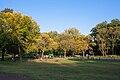Green Brook Park Playground; Plainfield, New Jersey.jpg