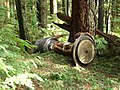 Grouse-Mt-forest-big-iron-thing-3656.jpg