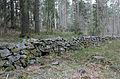 Hägnad2 Hållets naturreservat Nyköping.jpg