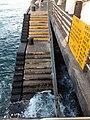 HK TST 尖沙咀 Tsim Sha Tsui 梳士巴利花園 Salisbury Garden public piers 維多利亞港 Victoria Harbour 黃昏 evening June 2020 SS2 30.jpg