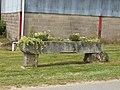 Hagnicourt-FR-08-auge florale-01.jpg