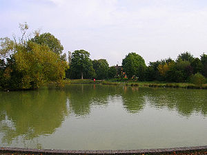 Hailsham - Common Pond, Hailsham