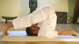 Yoga postures halasana
