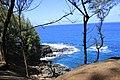 Hanalei, Kauai, Hawaii - panoramio (5).jpg