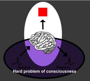 en: Diagram of hard problem of consciousness, ...