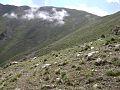 Hassanabad Chorbat Peak.jpg