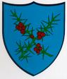 Hauts-geneveys.png