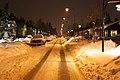 Herrhagsvägen i Tallkrogen by night - panoramio.jpg