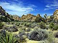 Hidden Valley, Joshua Tree NP 2013 (26815135655).jpg