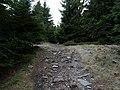 Hiking trail at northeast of the Altkönig 5.jpg