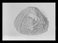 Hjälmfoder - Livrustkammaren - 26743.tif