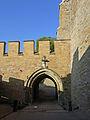 Hohenzollern-Torauffahrt105671.jpg
