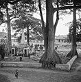 Hollands kerkhof, overzicht - 20651560 - RCE.jpg