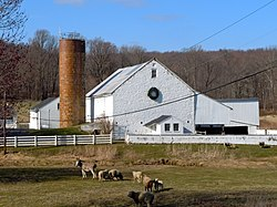Hopewell Farm Chesco.JPG
