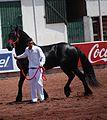 HorseTexcoco10.JPG
