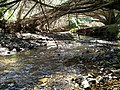 Hot day river - panoramio.jpg