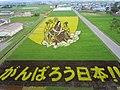 Inakadate Tanbo Art (田舎館の田んぼアート) - panoramio.jpg