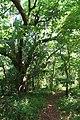 Indian Mound Park 06May2010 05.JPG