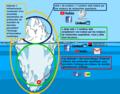 Internet, web, deepweb et darknets illustrés.png
