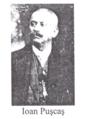 Ioan Pușcaș.png