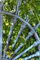Iron wheel (8065610875).jpg